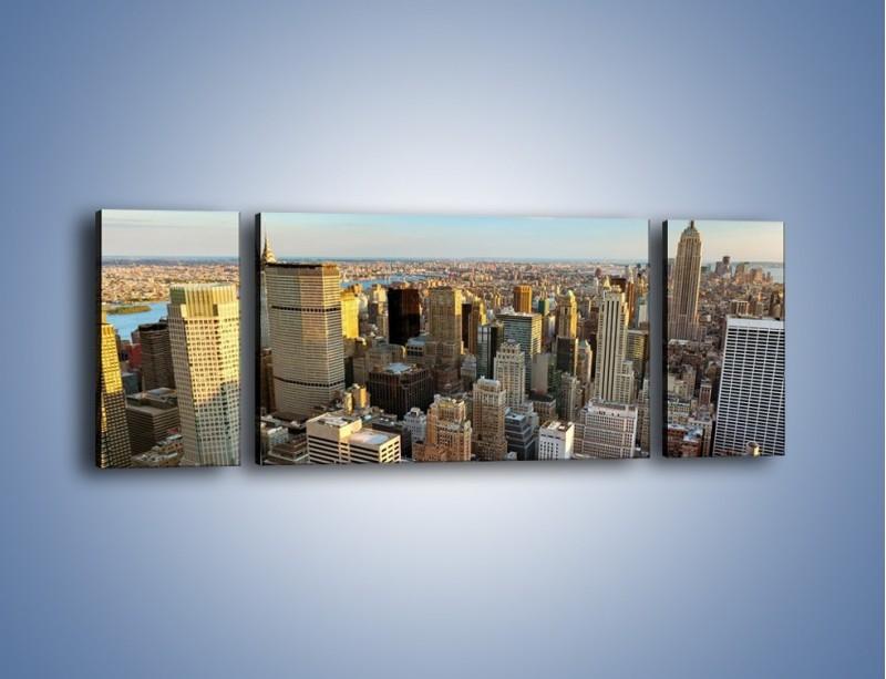 Obraz na płótnie – Manhattan w Nowym Yorku – trzyczęściowy AM412W5