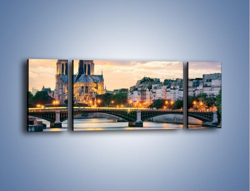 Obraz na płótnie – Katedra Notre Dame – trzyczęściowy AM454W5