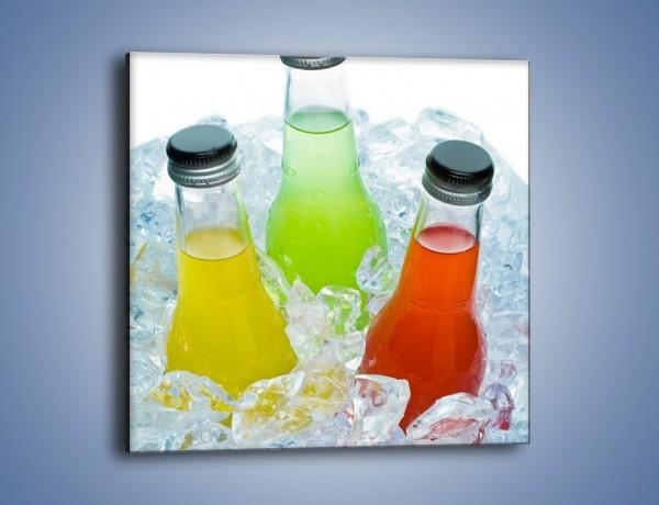 Obraz na płótnie – Schłodzone drinki w butelce – jednoczęściowy kwadratowy JN030