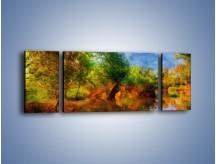 Obraz na płótnie – Drzewa w wodnym lustrze – trzyczęściowy GR010W5