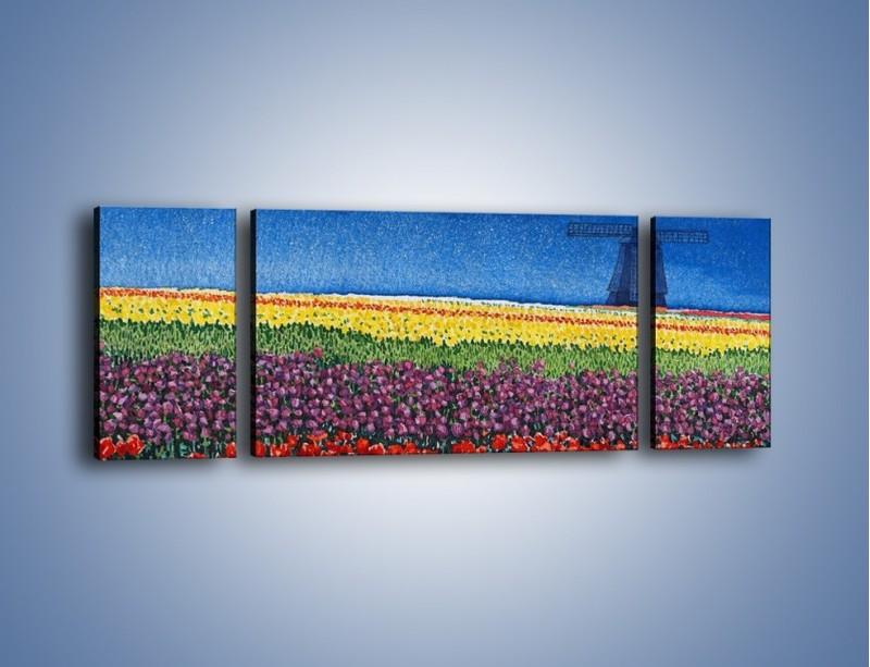 Obraz na płótnie – Spacer przez kolorowe maki – trzyczęściowy GR049W5