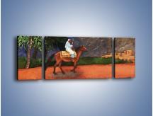 Obraz na płótnie – Arabski szejk na koniu – trzyczęściowy GR052W5