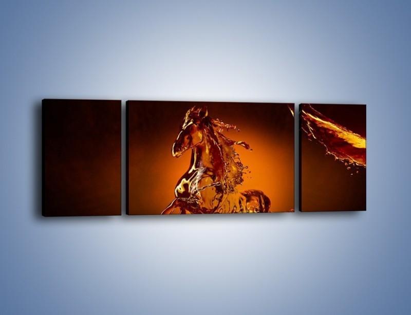 Obraz na płótnie – Wodny koń w mocnym świetle – trzyczęściowy GR228W5