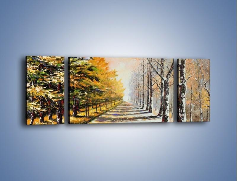 Obraz na płótnie – Trochę jesieni trochę zimy – trzyczęściowy GR292W5