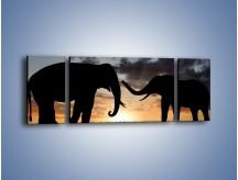 Obraz na płótnie – Dyskusja wśród słoni – trzyczęściowy GR309W5