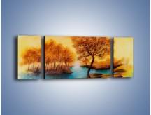 Obraz na płótnie – Drzewa nad samą wodą – trzyczęściowy GR352W5