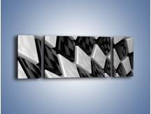 Obraz na płótnie – Czarne czy białe – trzyczęściowy GR425W5