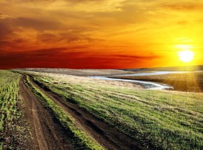 Droga polna w mroźny dzień - KN726
