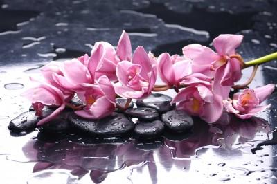 Rzucone kwiaty na wodę - K997