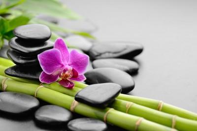 Samotny kwiat na bambusowych łodygach - K940