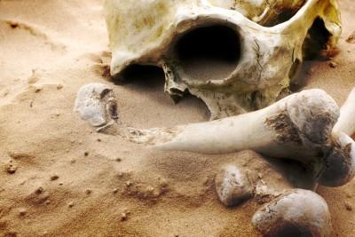 Starodawne wykopaliska - O254